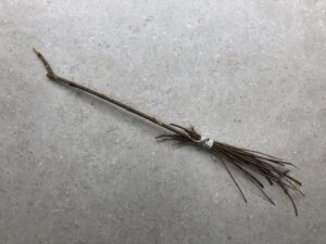 Homemade broomstick